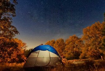 wild_wayanad_camping_cover